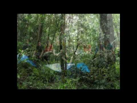 Park View Honduras 2011