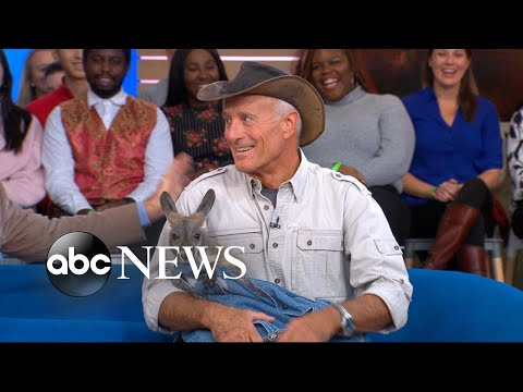 Jack Hanna brings a cuteness explosion to 'GMA'