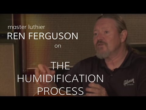 Master Luthier Ren Ferguson On The Humidification Process  •  Wildwood Guitars Interview