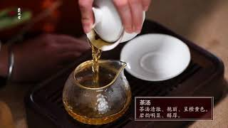 Varieties of WuYi YanCha --Tea Samples Combination