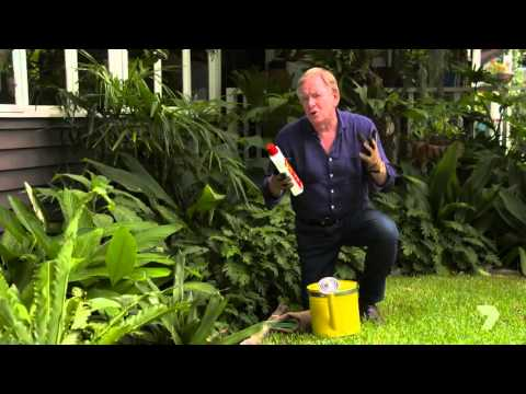 Graham Ross Great Gardens of the World - How to rejuvenate soil with GOGO Juice