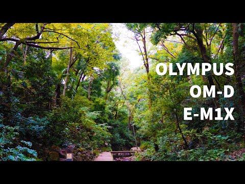 [Review]OLYMPUS OM-D E-M1X with OLYMPUS M.ZUIKO DIGITAL ED 12-100mm F4.0 IS PRO.