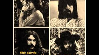 Watch Byrds Baby What You Want Me To Do live video