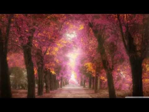 Yiruma - Destiny of Love (Full Album)