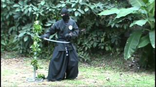 Sword Tricks & Stunts