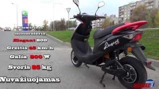 Elektrinis Motoroleris Elegant 800 ,Electric Scooter 48V 800W