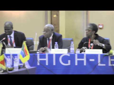 [5/7] - Roundtable discussion: strengthening African commitment, ... (cont.)