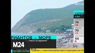 Во сколько обойдется отдых в Сочи этим летом - Москва 24
