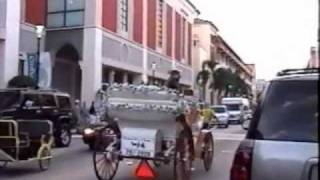 MAN PULLING HORSE CARRIAGE