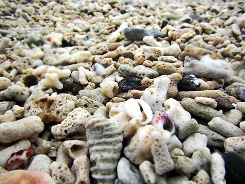 Buktot Beach Mindoro 2016