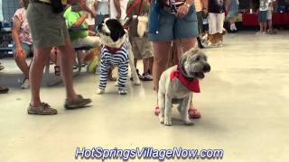 Hot Springs Village AR Dog Show