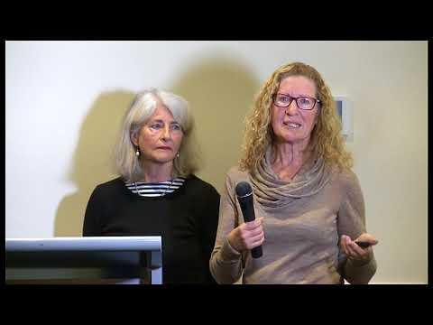 Connection Emotion Reflection Presentation- SWSPHN Mental Health Symposium - September 2017