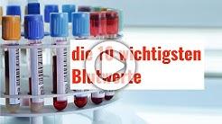 Die 10 wichtigsten Blutwerte - diese Laborwerte sollten Sie kennen