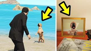 GTA 5 - I've Found Michael's LOST Dog! (Easter Egg)