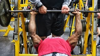 The Best Chest Workout For Beginners!!!! Add Muscle & Strength!!!