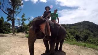 Thailand Trip Elephant Ride