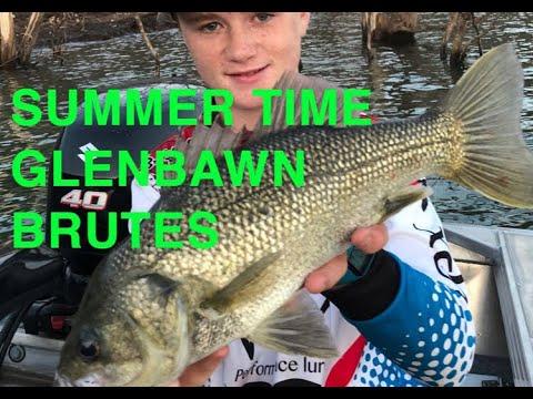 Glenbawn Bass Fishing Summer Time