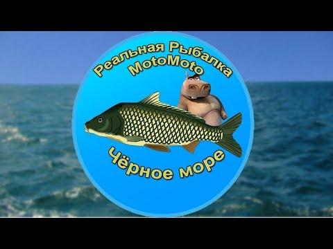 Чёрное море   Реальная Рыбалка