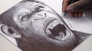 DRAWING CAESAR | PLANET OF THE APES - WITH A BLACK BALLPOINT PEN