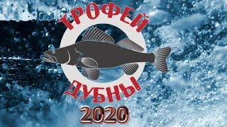 ТРОФЕЙ ДУБНЫ 2020