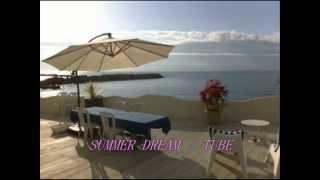 Gambar cover SUMMER DREAM/ TUBE 夏歌① (covered by kiyota)