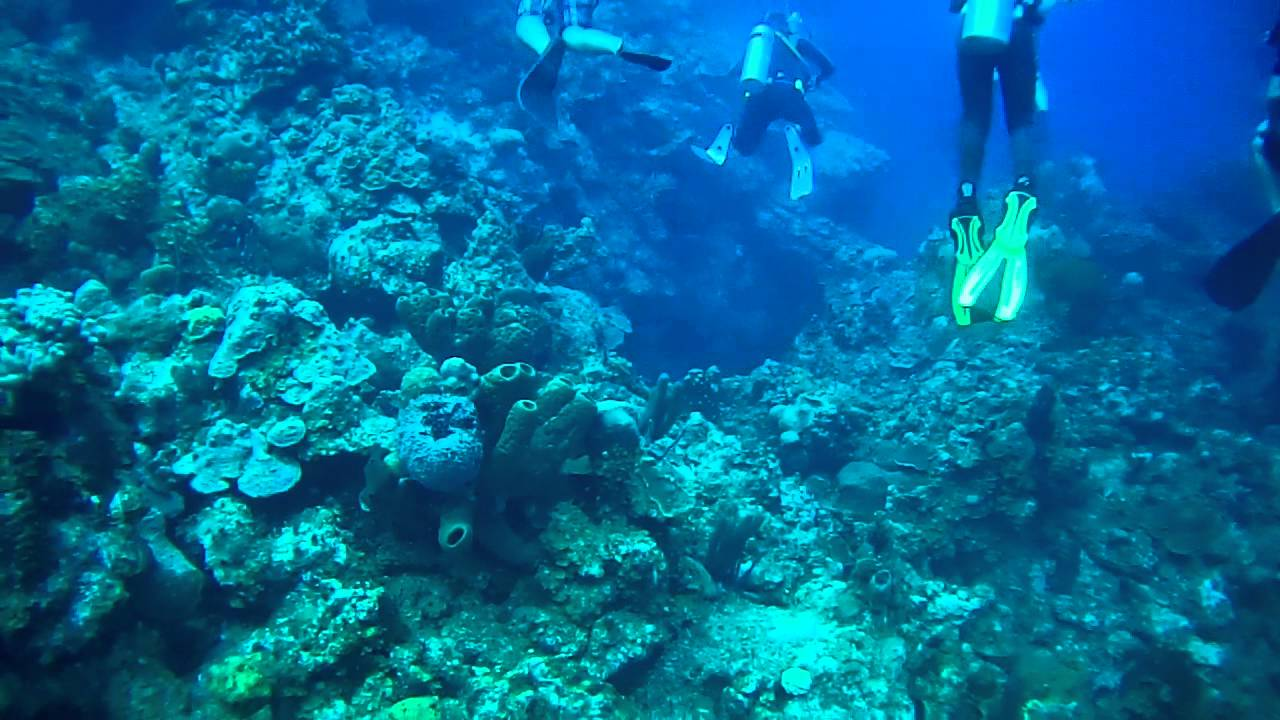 More Scuba Diving Turks And Caicos With The Beaches Resort