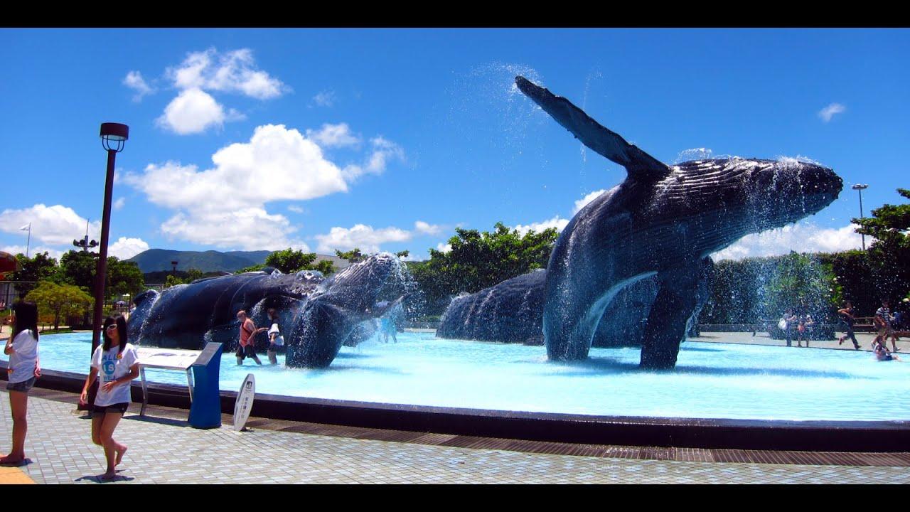 National Museum of Marine Biology and Aquarium, Taiwan - YouTube