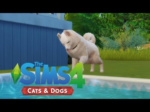 Swimming Doggo!! | Sims 4 Cats and Dogs | Ep 2