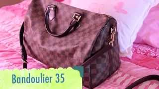 Louis Vuitton Bag Collection 2014