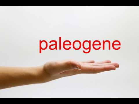 How to Pronounce paleogene - American English
