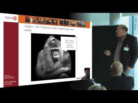 Das Gorilla Experiment ...