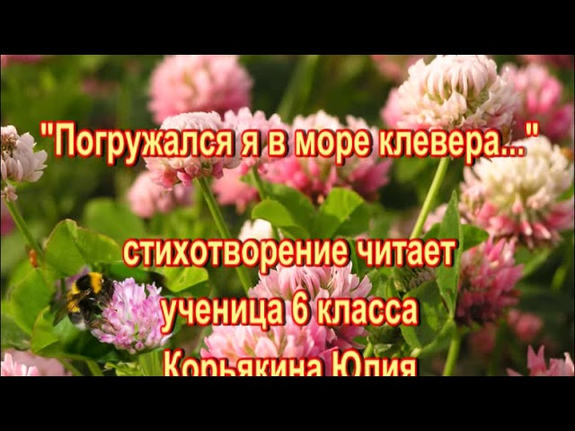 Изображение предпросмотра прочтения – ИринаЧищеня читает произведение «Погружался я в море клевера...» А.А.Блока