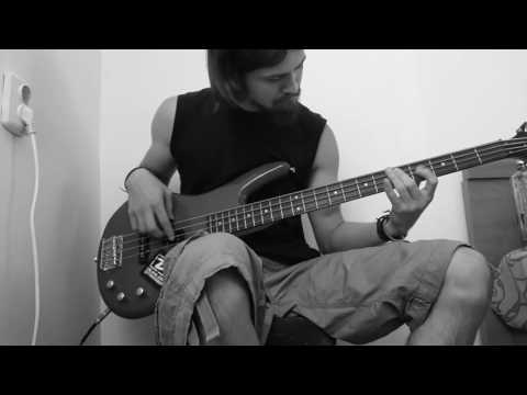 Elle King - Ex`s and Oh`s (Bass cover)