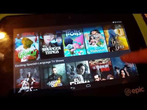 Netflix on Leapfrog Epic