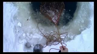 Рыбалка  на фитили зимой, налим и язь