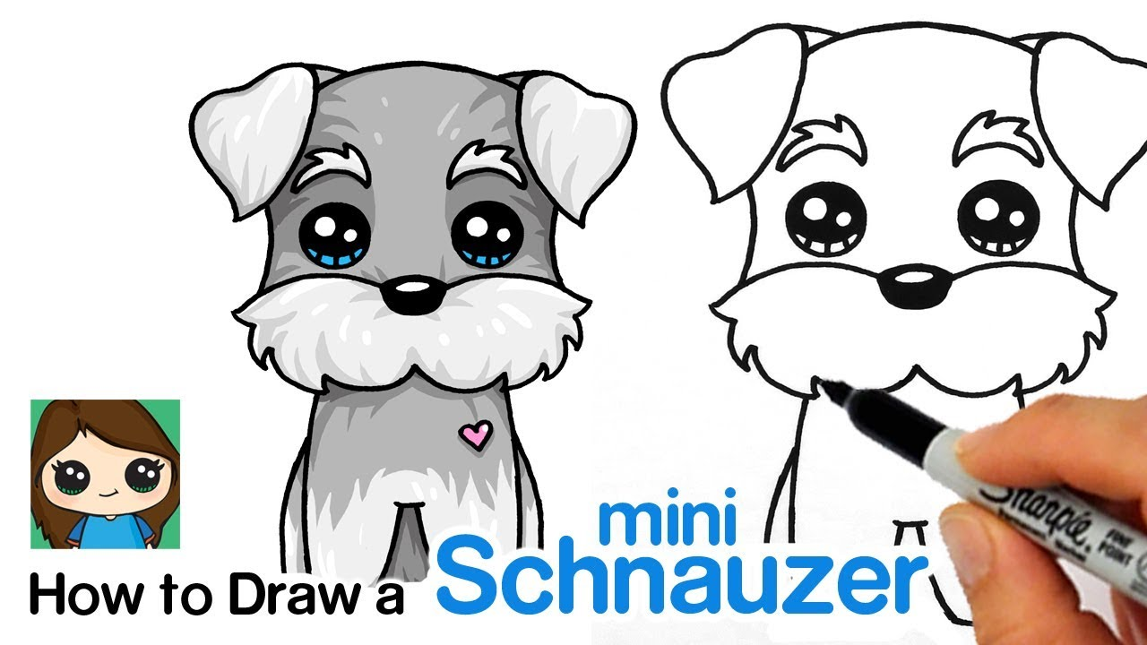 How To Draw A Miniature Schnauzer Puppy Easy Cartoon Dog Youtube
