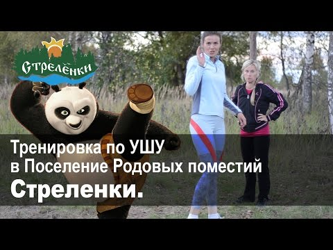 Тренировка по УШУ в Поселение Родовых поместий Стреленки. Сентябрь 2016г.