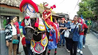 Download Video Kuda renggong di hari raya bergema MP3 3GP MP4
