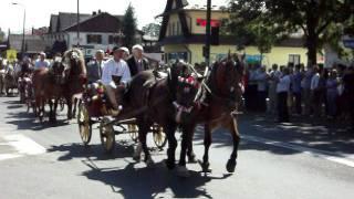Wojewódzkie dożynki w Kamienicy 2011r. cz.2