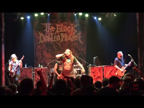 """The Black Dahlia Murder release Matriarch - Counterparts new song """"Haunt Me"""""""