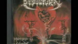 NEW RENAISSANCE RECORDS discovered Brazil's SEPULTURA in 1986/87 an...