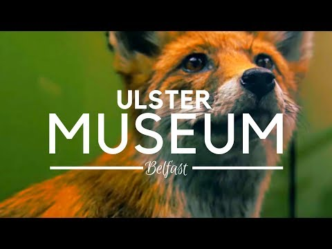 Ulster Museum Belfast; History, Art and Natural Sciences Mix