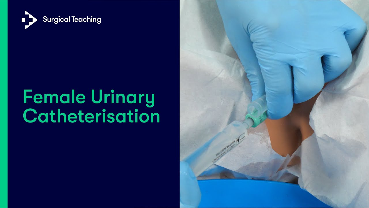 Download Female Urinary Catheterisation | Everything You Need To Know To Perform This Essential Skill