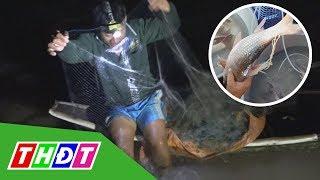 Nông dân bội thu nhờ trúng mẻ lưới cá cóc | THDT
