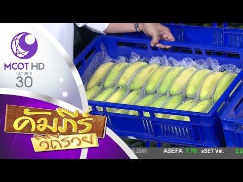 ย้อนหลัง คัมภีร์วิถีรวย (5 ม.ค.60) เปิดคัมภีร์รวยด้วย กล้วยหอม   ช่อง 9 MCOT HD