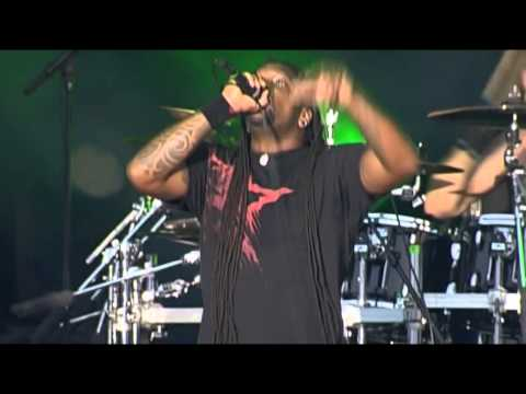 SEPULTURA - DEAD EMBRYONIC CELLS - Live Hellfest 2010