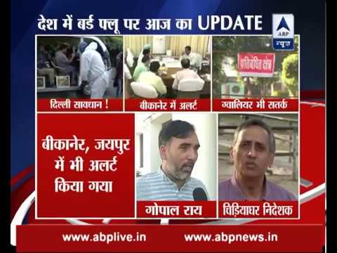 Bird Flu: Virus H5N8 is not that deadly for humans, says Delhi government