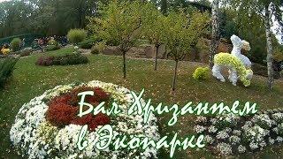 Бал Хризантем в Экопарке | Осень 2017