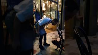 Официант увидел собаку в ресторане. Дальше смеялся весь ресторан