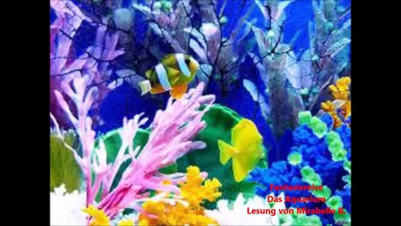 fantasiereise f r kinder das aquarium lesung geschichte h rbuch entspannung. Black Bedroom Furniture Sets. Home Design Ideas